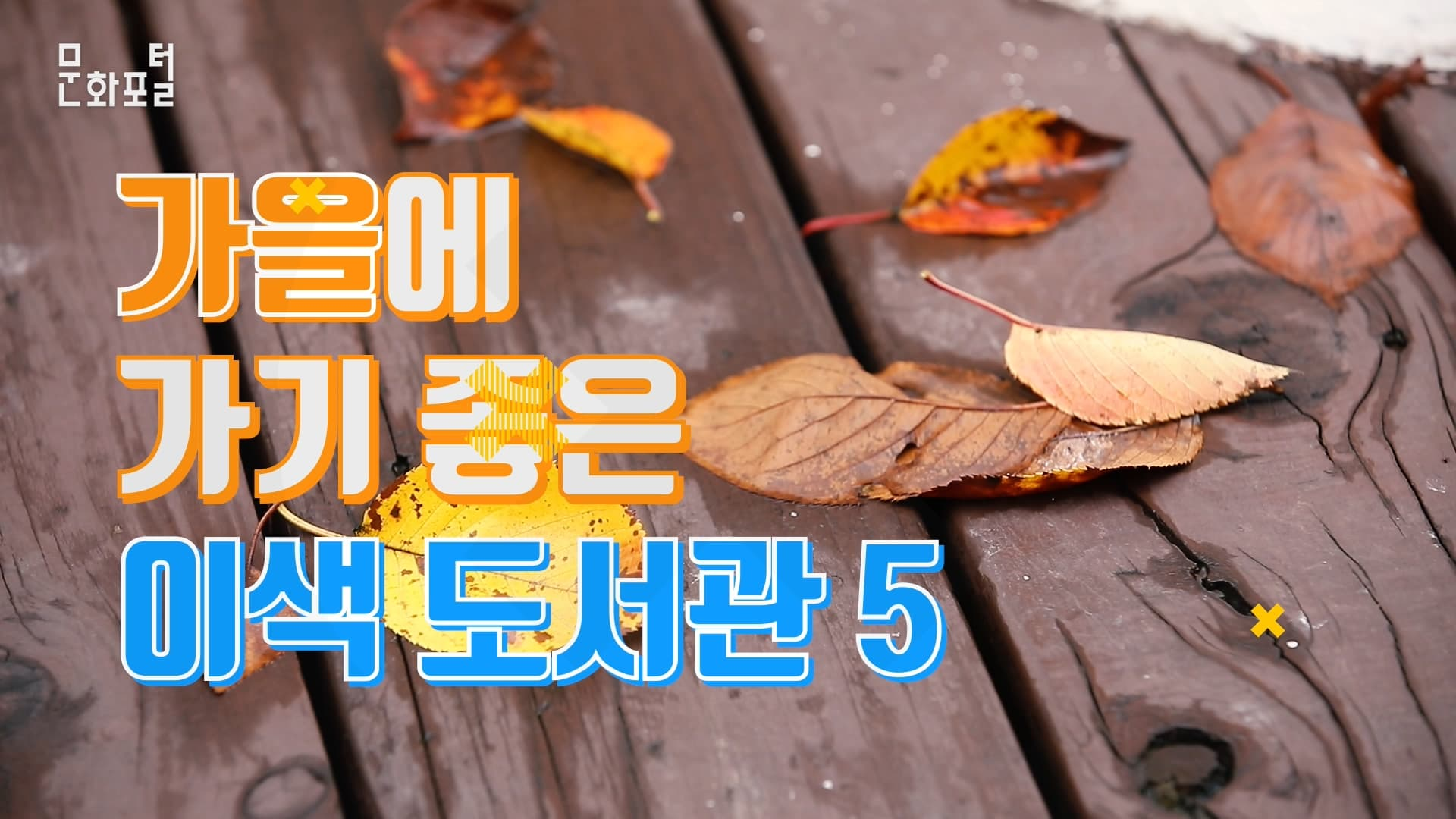 [랭킹즐길거리] 가을에 가기 좋은 이색 도서관